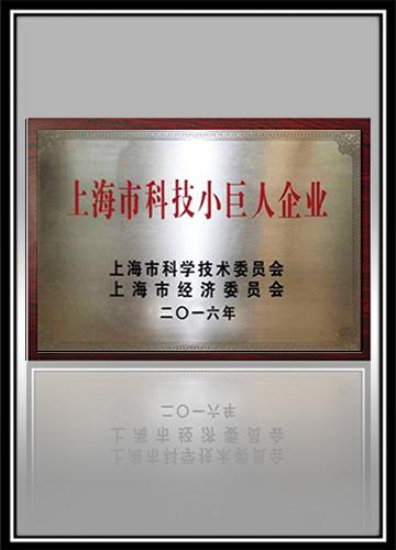 上海市科技小巨人企业