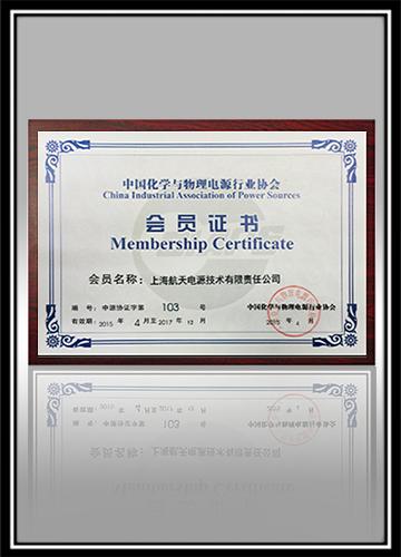 中国化学与物理万博max官网手机登陆行业协会会员证书